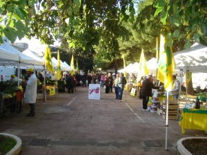 veduta mercato C.A. piazza ariosto