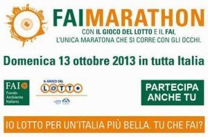 Fai Marathon 2013