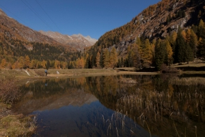 Nudole lake, Daone valley, Trentino Alto Adige, Italy, Europe