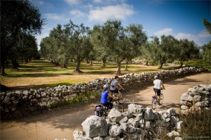 Foto Salento Bici Tour